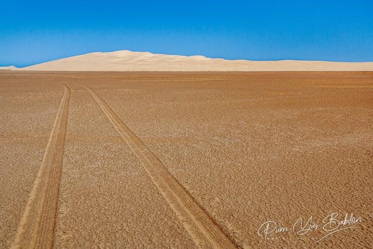 Traces de pneus dans le désert