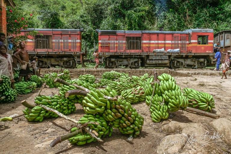 Train Fianarantsoa - Côte Est (FCE), Madagascar
