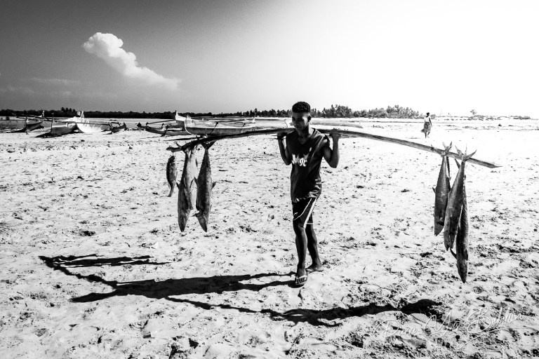 Retour de pêche à Morondava, Madagascar