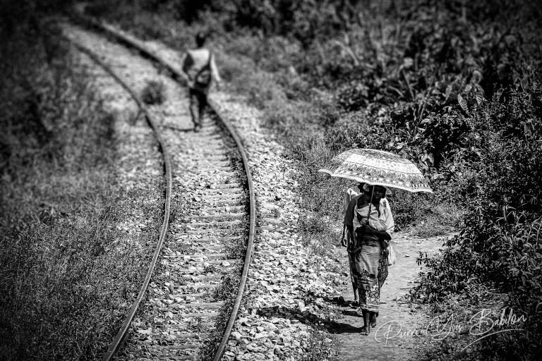 Le long de la ligne ferroviaire du train Fianarantsoa - Côte Est, Madagascar