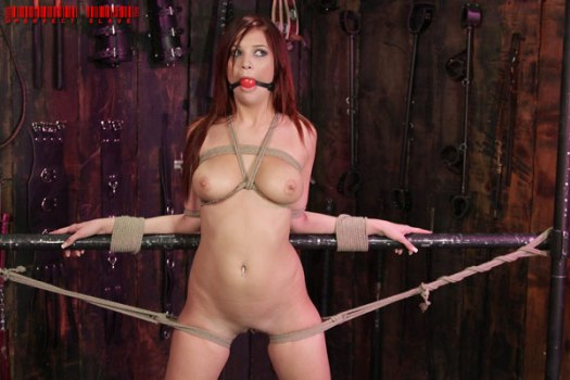 Jayden Cole extreme hardcore bdsm model
