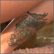 Jenna Jameson tattoos jenna-jameson-leg-100