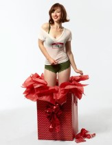 Karine Vanasse nue sexy