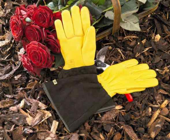 These Gold Leaf leather gloves are waterproof and durable; we recommend them for gardeners looking for real style and luxury in their gardening experience.