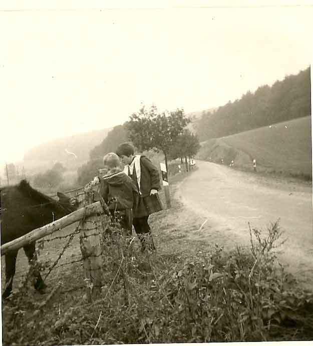 Meikn erstes Foto: Pferdewiese mit Geschwistern.