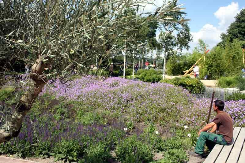 Zwischen Jardin d'Azur und Jardin de Sol.