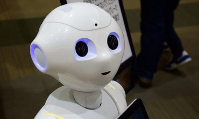 robots biológicos