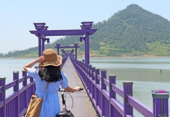 isla púrpura