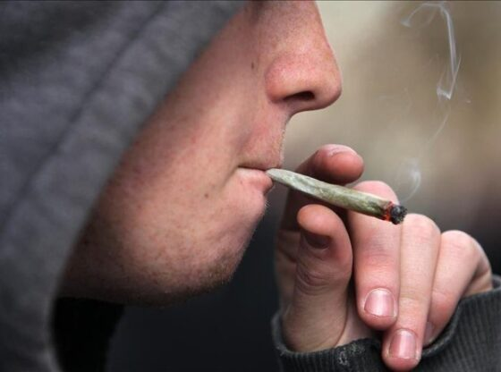 marihuana gratis