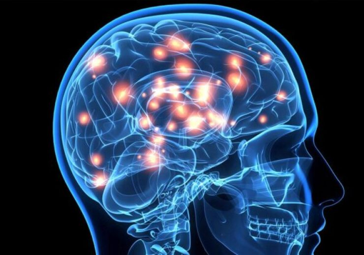 Propiedades Neuroprotectoras