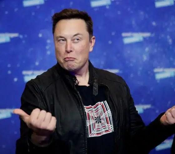 Elon Musk predice