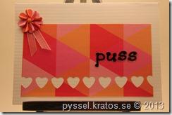 nr99_kort_puss