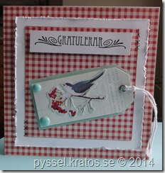fågelkort