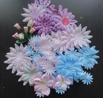 rosa, blå och lila blommor