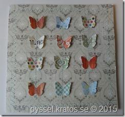 sydda fjärilar