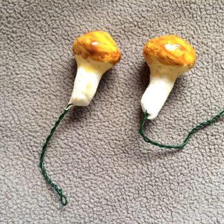 Mini svampar