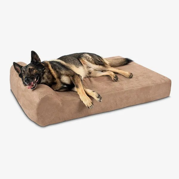 8 best large dog beds 2020 the