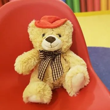 TeddyMozart Voice Recordable Bear