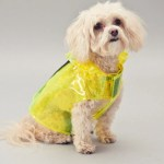 27 Of The Best And Coolest Dog Accessories The Strategist New York Magazine