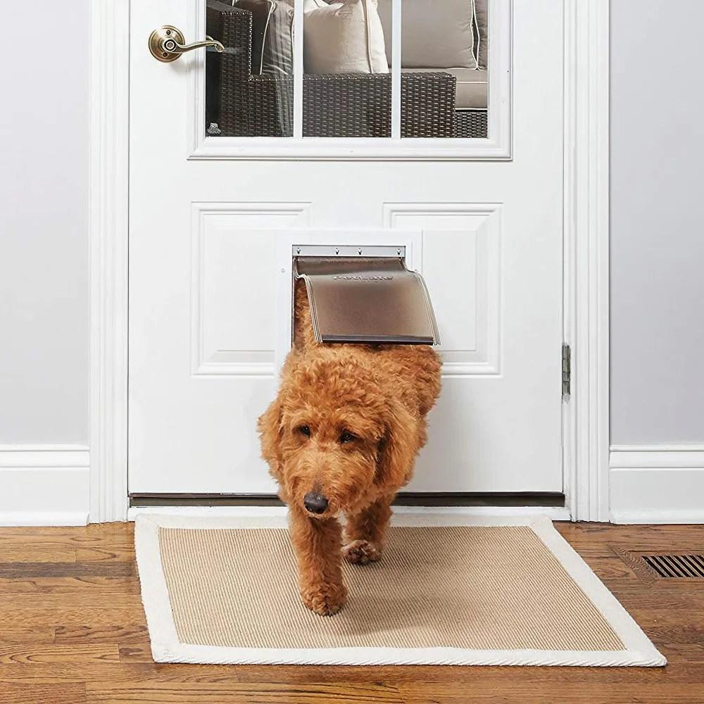 9 best dog doors 2019 the strategist