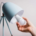 6 Energy Efficient Light Bulbs That Actually Look Good 2018 The Strategist New York Magazine