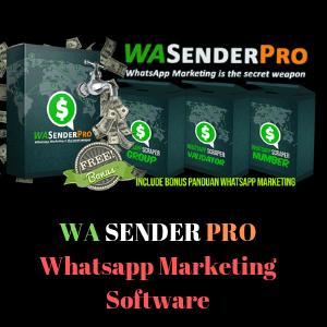 Whatsapp Marketing Software   Qsender   Best Marketing Tools!
