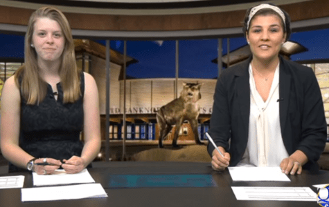 Sports Paws: 4/21/14