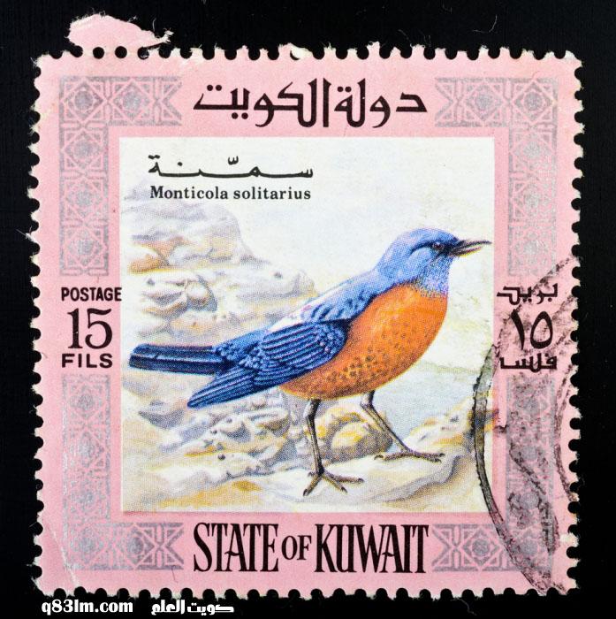 طابع بريد كويتي به صورة طائر سمنة