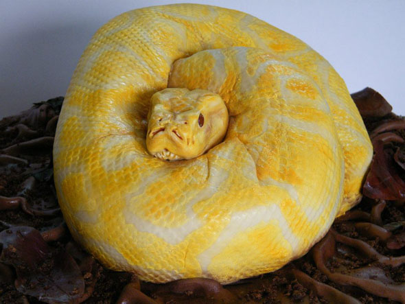 49fe6907c Snake Cake Looks So Real | Q8 ALL IN ONE - The Blog