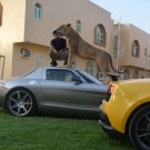 Rich Guy With Wild Animals On Instagram