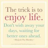 enjoy-life-quotes-15