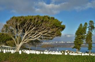 Le cimetière surplombant la baie de San Diego