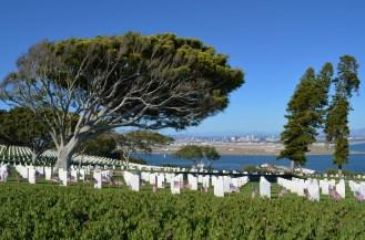 Le cimetière et ses arbres brossés par le vent