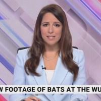 Q VIDÉOS - La télé australienne crève l'abcès en direct - Fauci, Daszak, Zhengli