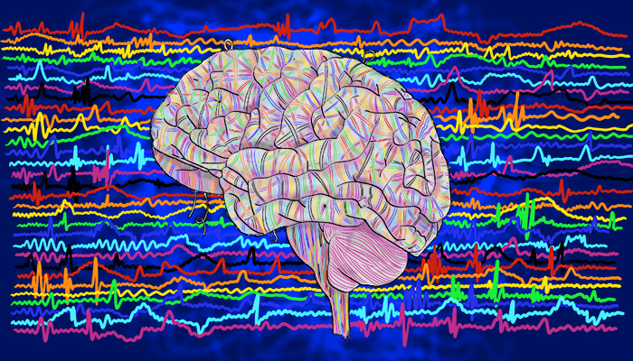 neural oscillations can rely on genetics and underlie the phenomenon of epilepsy
