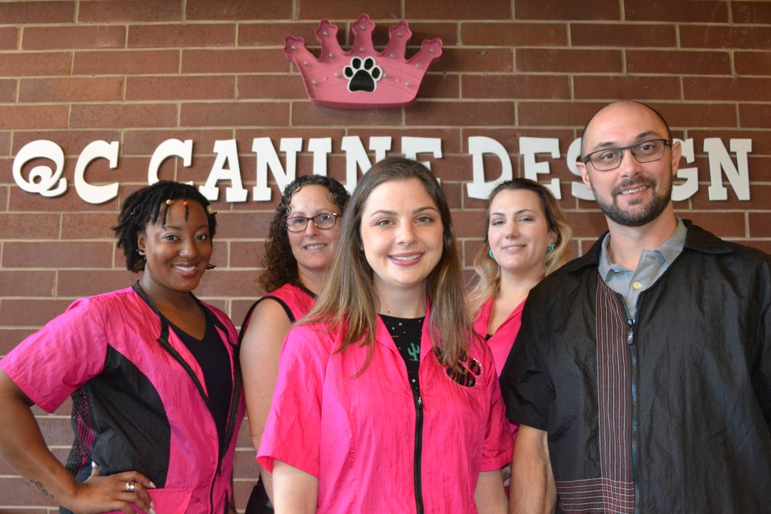 Meet the awesome QC Canine Design Staff!