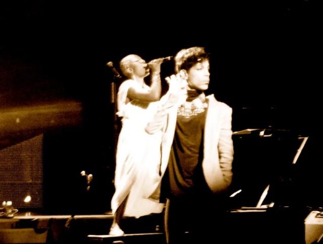 Prince-Shelby-J