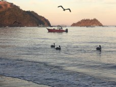 playas-de-coco-jan-7-17-10