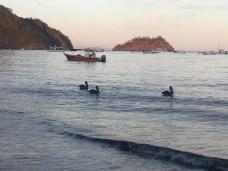 playas-de-coco-jan-7-17-9