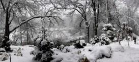 winter-panorama1
