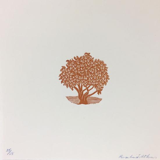 ros-atkins-sanguine-tree