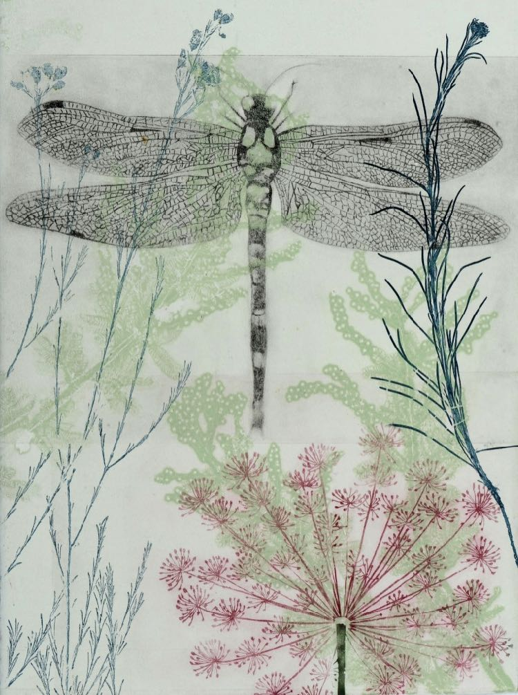 Trudy Rice Dragonfly and pink euphorbia 2019 © Trudy Rice