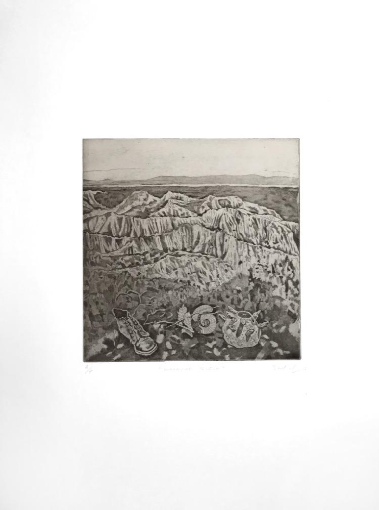 Steve Lopes Gallipoli Walkers Ridge archival set Tom Goulder