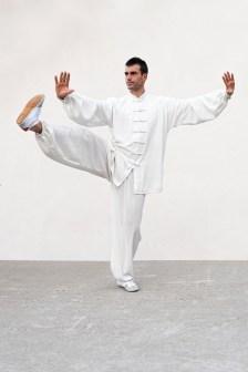 Taiji Quan style Yang Colin Manoha