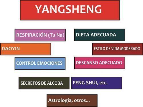 Los enfoques de la terapéutica Yangsheng