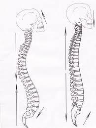 Zhan Zhuang spine