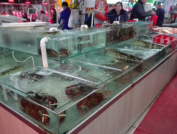 Qingdao Expat China Fruit and Veggie market Mai dao lu