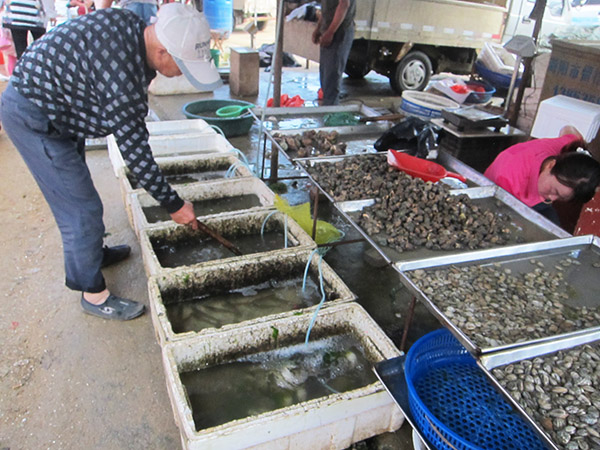 Haiyang veggie market Qingdao expat life