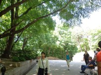 tour guide ber hanbok