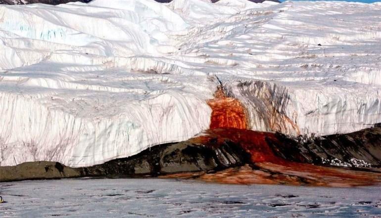 """美专家:白宫正用""""新冠经济学"""",带着美国走向崩盘"""